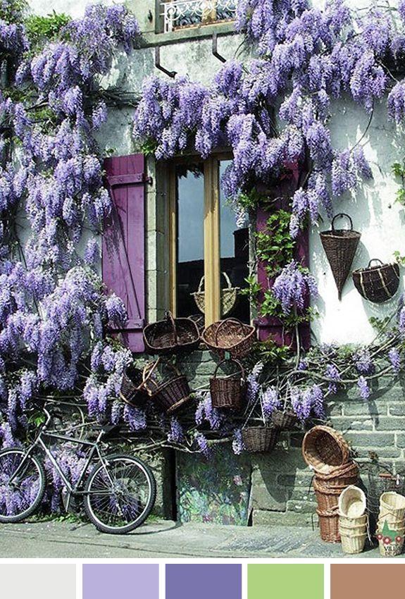 Parede de vasos e flores roxas Itália