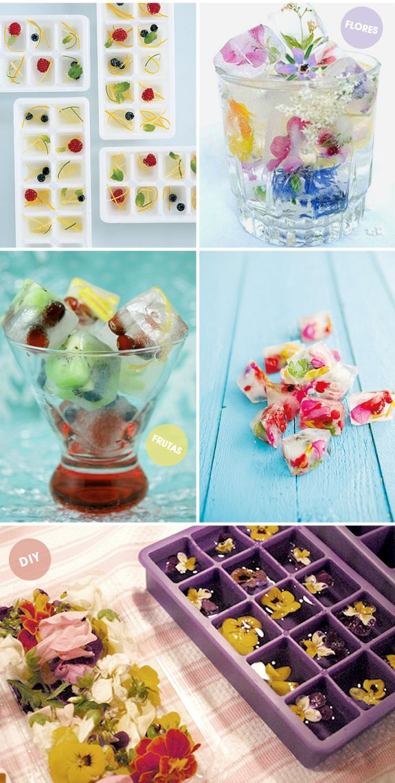 fruta e flor no gelo