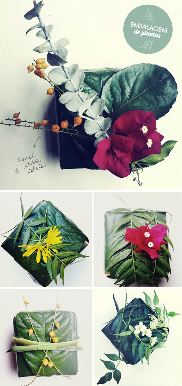 Embalagem de planta