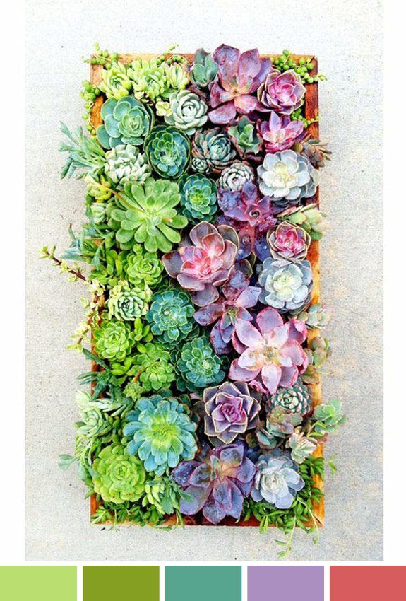 Inspiração do Dia: Quadro de plantas